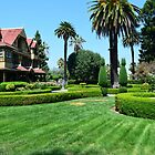 Mysterious House, California. Beautiful palm tree garden and building in summer blue sky. by naturematters