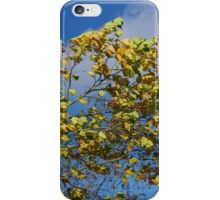 And The West Wind Will Blow iPhone Case/Skin