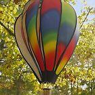 Wind Balloon by Kenneth Hoffman