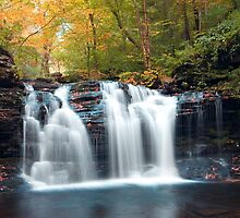 Seasons Changing At Wyandot Falls by Gene Walls