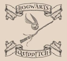 Hogwarts Quidditch with Snitch and Quidditch Broom by NerdGirlTees
