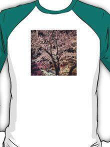 Sakura - Cherry Blossom - Kyoto T-Shirt