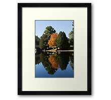 Defying the Green - the First Autumn Tree Framed Print