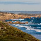 Rugged Coastline by Tony Waite