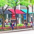 Chicago IL - Shopping Along Michigan Avenue by Susan Savad