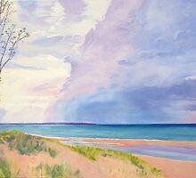 Lake Michigan Summer Storm by Richard  Carissimi