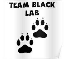Team Black Lab Poster
