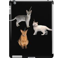 Uni-Kitties iPad Case/Skin
