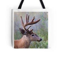 White-tailed deer Buck Tote Bag