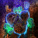 LSD by PictureNZ