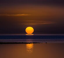 Kissed by the sun. by Frank Smith