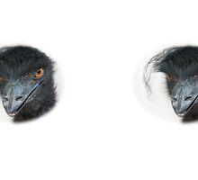 Emu by Thomas F. Gehrke