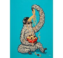 A Sloth Eating Spaghetti Photographic Print