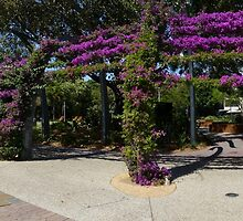 South Bank Arbour panorama by PhotosByG