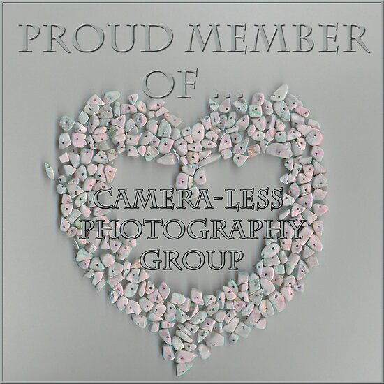 Banner For Camera-Less Photography Group by Sandra Foster