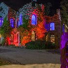 Beardsley Castle by barkeypf