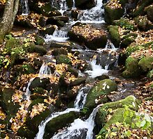 {autumn water I} by Pursuing the Beauty Photography