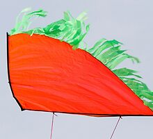 colorful kites flying in the sky by spetenfia