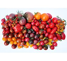 Tomatoes Are Red Photographic Print