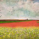 Splendor in the Grass by Susan Werby