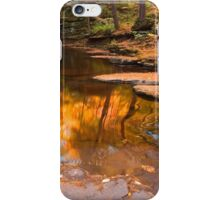 Autumn Reflection At The Top of Adams Falls iPhone Case/Skin