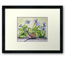 Harold in the Violets Framed Print