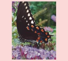 Spice Bush Swallowtail Butterfly Kids Clothes