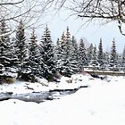 Winter In Breckenridge  by Danny Key