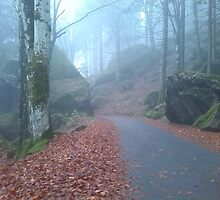 Alpine Road, Autumn in Valmasino, Italy by madigitalart