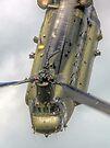 Wokka Wokka 2 !! Chinook Dunsfold 2014 - HDR by Colin J Williams Photography