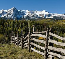 Fence To Nowhere by Gary Benson