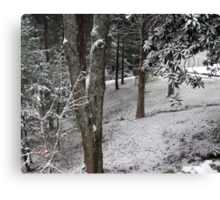 Winter Woods... products Canvas Print