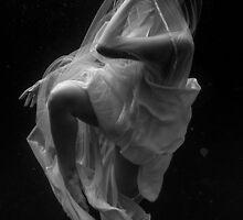 Romi-Submerged4 by Gavin Poh