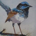 Blue Wren by Kay Cunningham