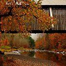 Autumn Beaverkill Covered Bridge by PineSinger