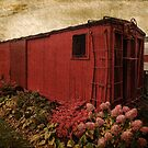 Memory Train by PineSinger