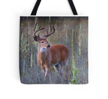Early Morning White tailed Buck Tote Bag