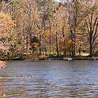 Lake Lincoln by Sandy Keeton