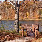 Celina Lake Path by Sandy Keeton