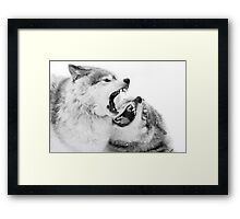 Christmas Howlers - Timber Wolf Framed Print