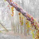 Enigma Trees 2 by Igor Zenin