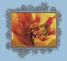 Portulaca in Orange Fading to Yellow Kids Clothes