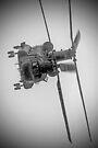 Wokka Wokka 3 !! - Airbourne 2014 BW by Colin J Williams Photography