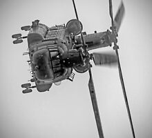 Wokka Wokka 3 !! - Airbourne 2014 BW by Colin J Williams Photography