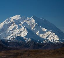 Denali — the great one by Jan Timmons