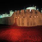 Poppies at the Tower of London - At Night #2 by InterestingImag