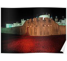 Poppies at the Tower of London - At Night #2 Poster