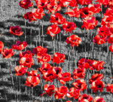 Poppies For The Fallen Sticker