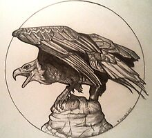 bald eagle drawing by RobCrandall