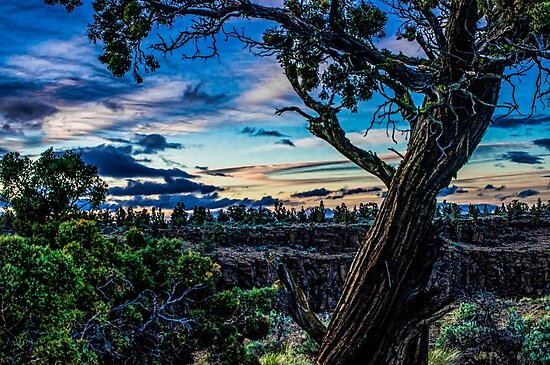 Oregon's Drier Side/Redmond by Richard Bozarth
